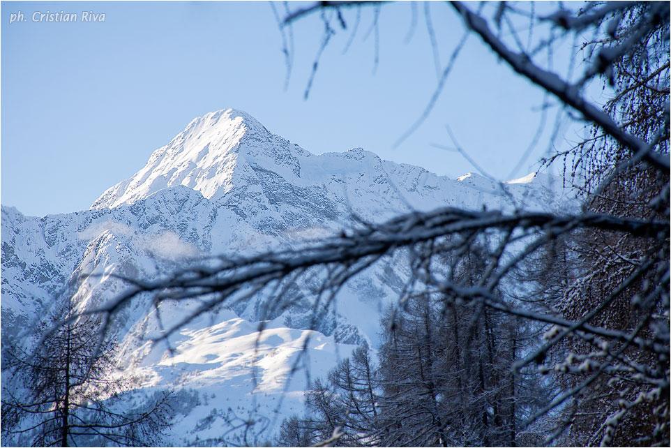 Ciaspolata in Val Canè: scorcio invernale