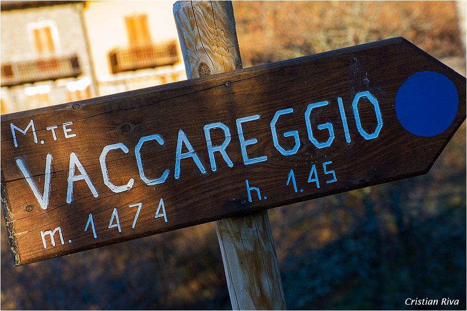 Monte Vaccareggio
