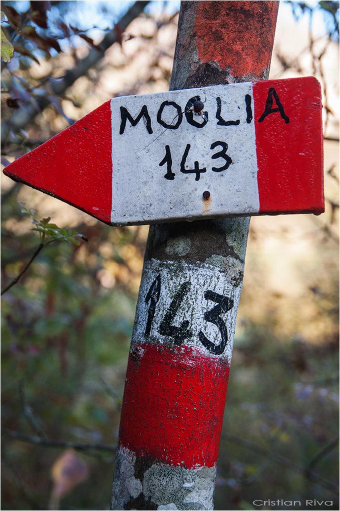 Val Trebbia - Anello del Brugnello: indicazioni per Moglia