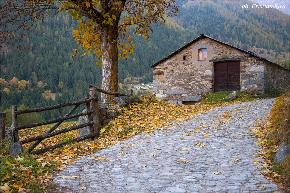 Val Grande di Vezza d'Oglio: baita