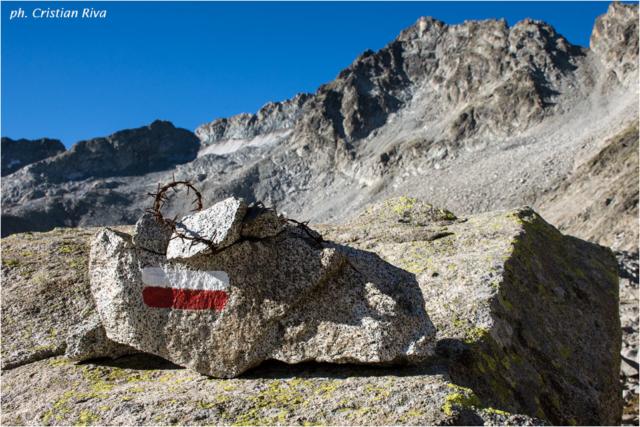 Sentiero dei Fiori: verso il passo del Castellaccio