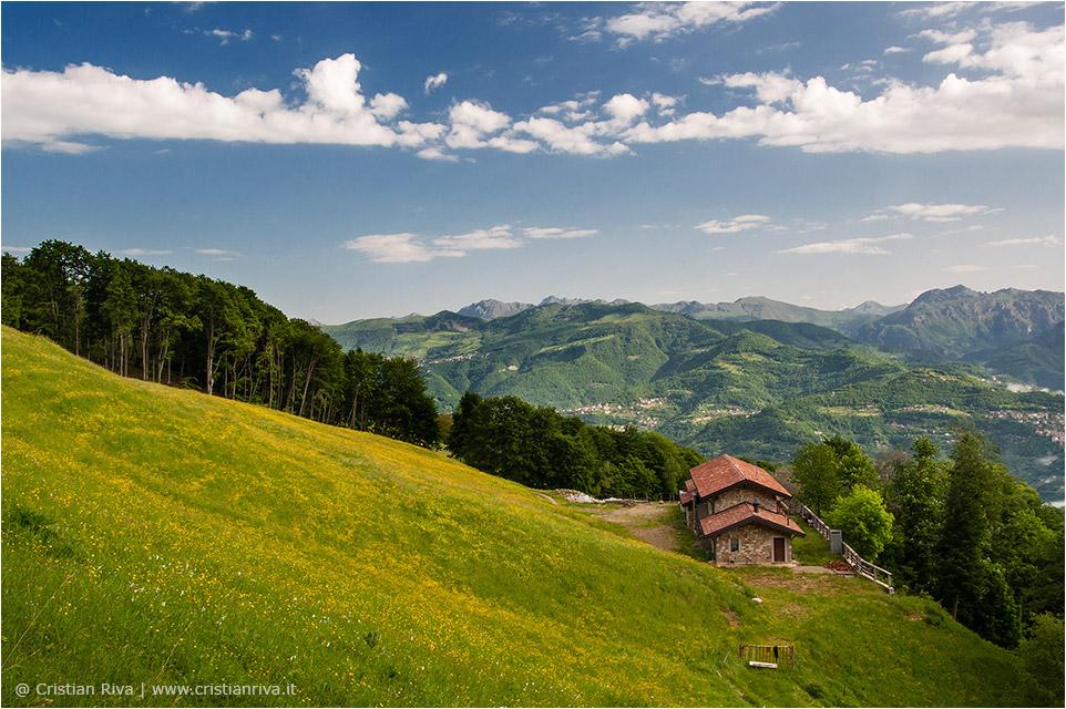 Anello tra i narcisi del monte Linzone