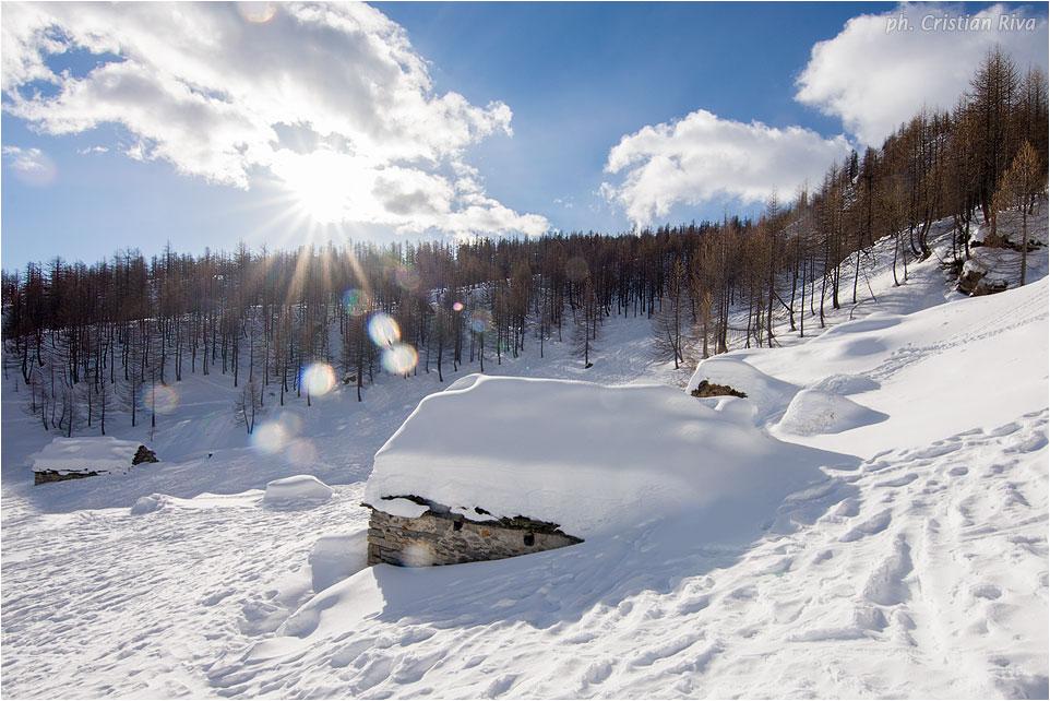 Ciaspolata sul Monte Cazzola: Alpe Misanco