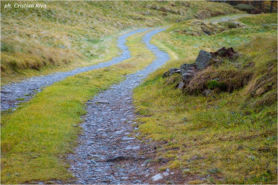 Anello del Monte Pagano: strada militare