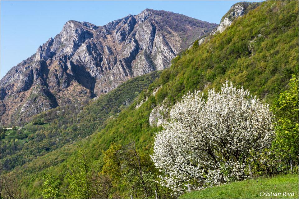 Monte Moregallo via Preguda: Corno Birone