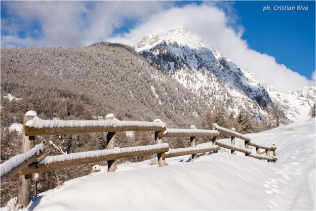 Ciaspolata in Val Canè: staccionata