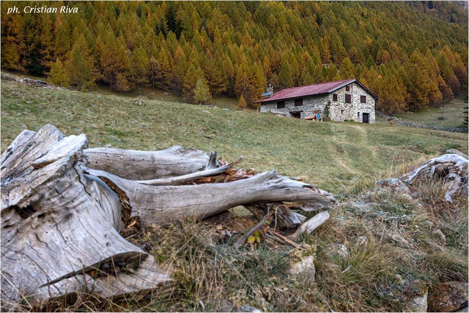 Val Grande di Vezza d'Oglio: escursionista