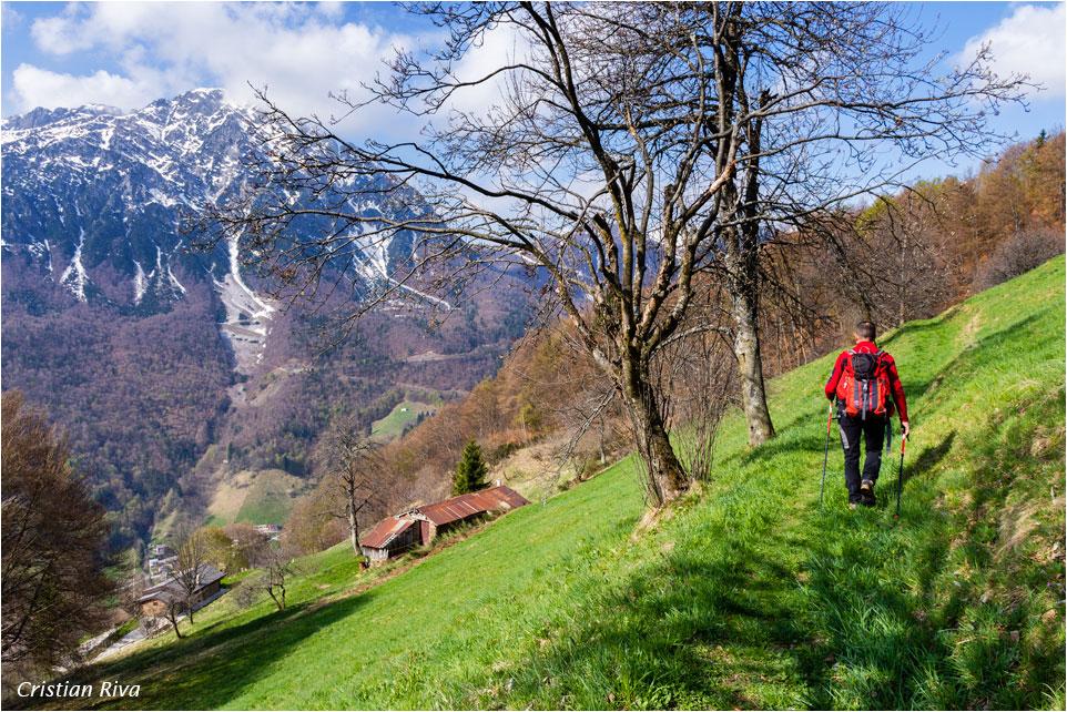Monte Pigolota: lungo il sentiero