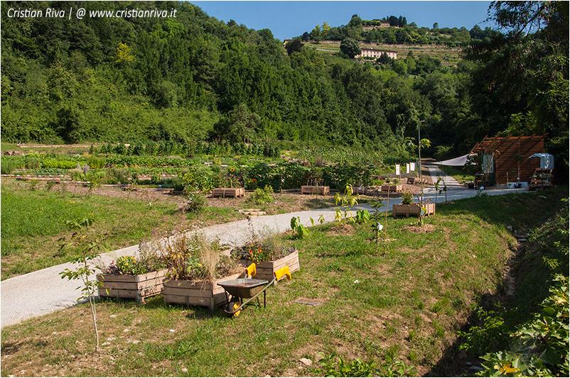 Bergamo, sentiero dei monasteri - Orto botanico