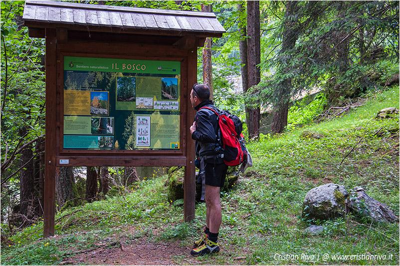 Sentiero estivo del Calvi: pannello turistico