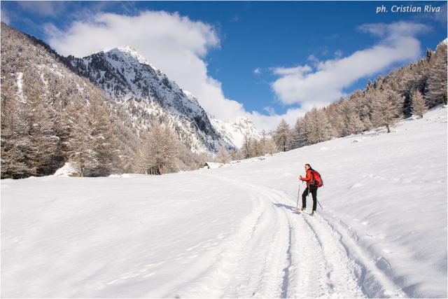 Ciaspolata in Val Canè: strada innevata