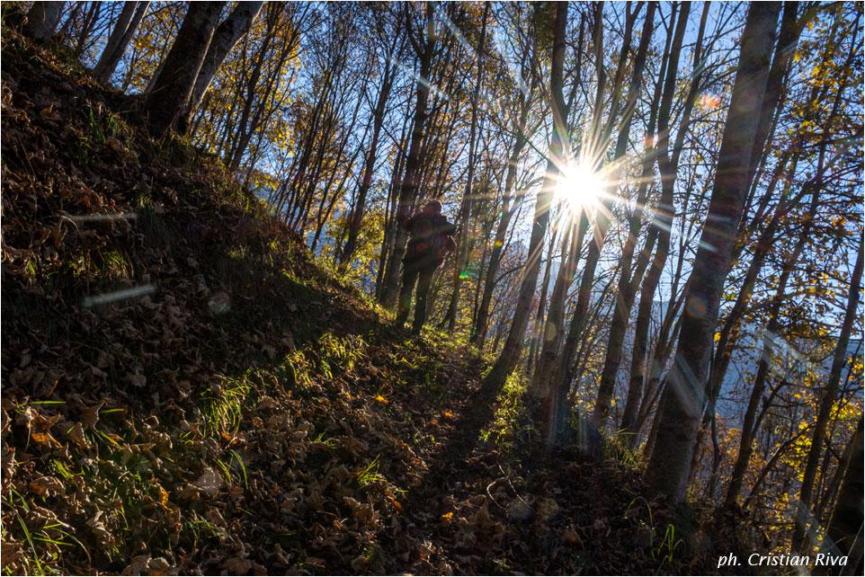 Cima Baresi e Porta delle Cornacchie: lungo il sentiero