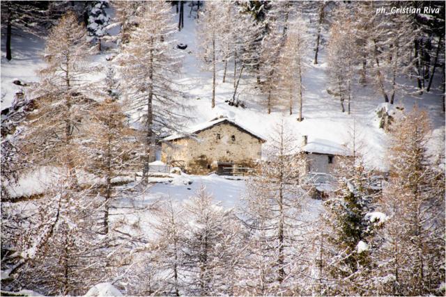 Ciaspolata in Val Canè: Case del Ponte