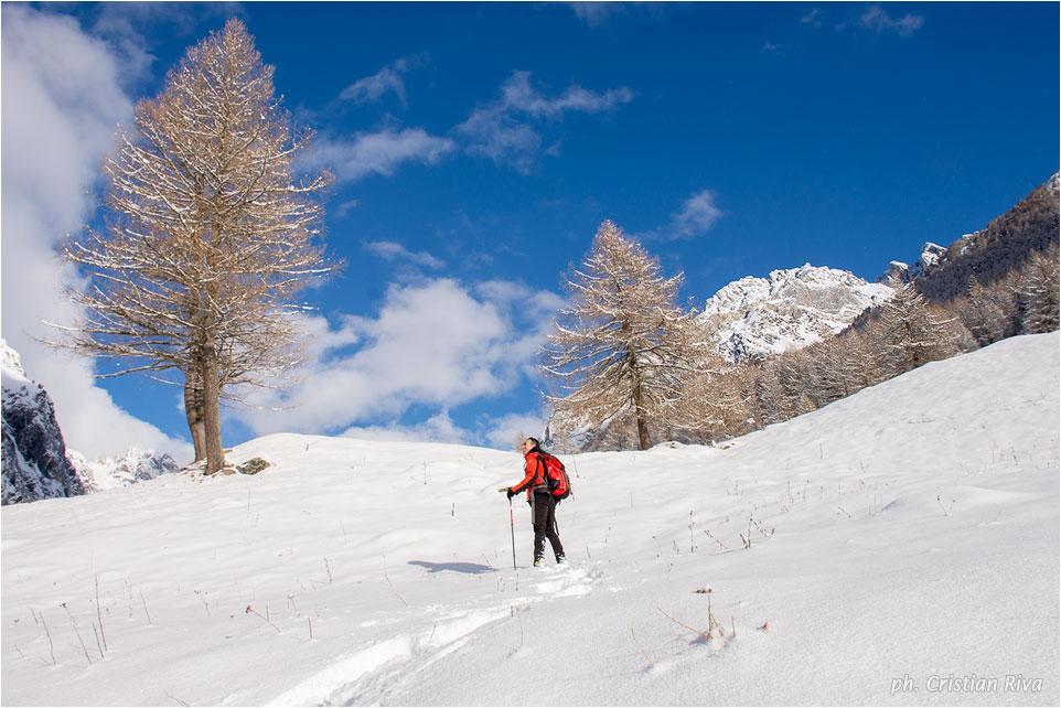 Ciaspolata in Val Cane'