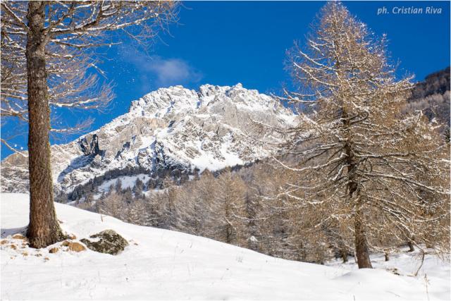 Ciaspolata in Val Canè: panorama
