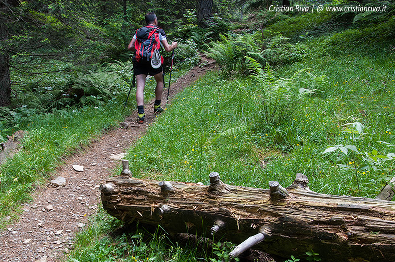 Sentiero estivo del Calvi: lungo il sentiero
