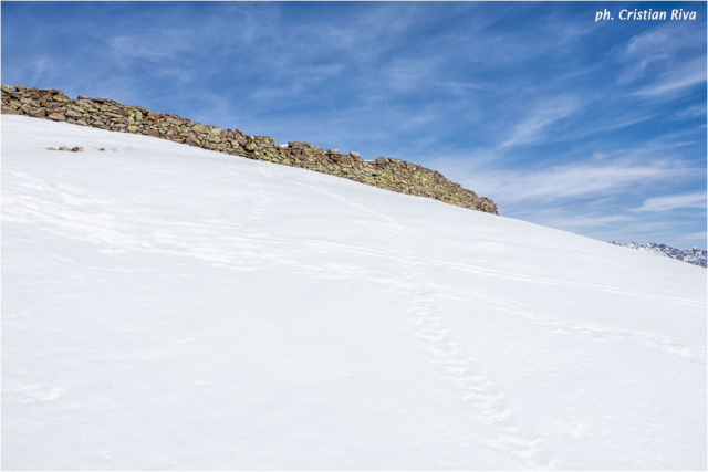 Ciaspolata sul Monte Pagano: recinzione in pietra