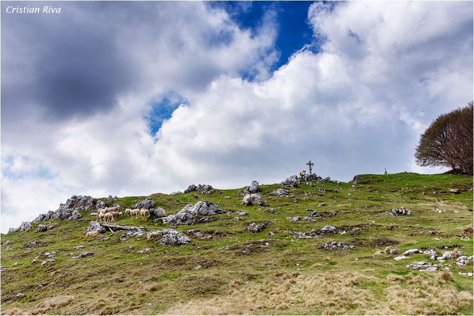 Monte Moregallo via Preguda: verso la croce di vetta