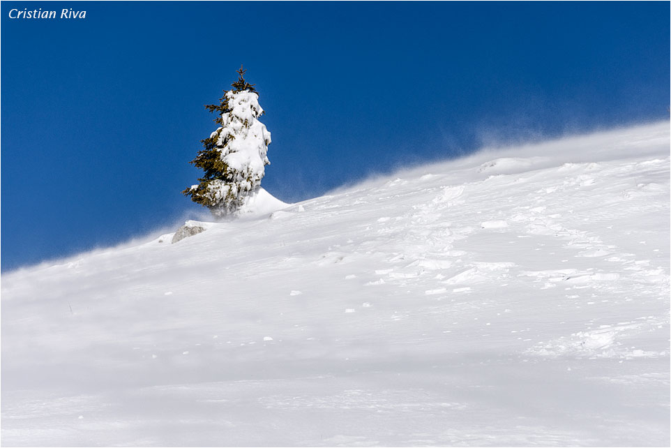 Ciaspolata monte Arete