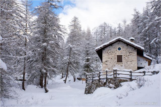 Ciaspolata in Val Canè: Cortebona