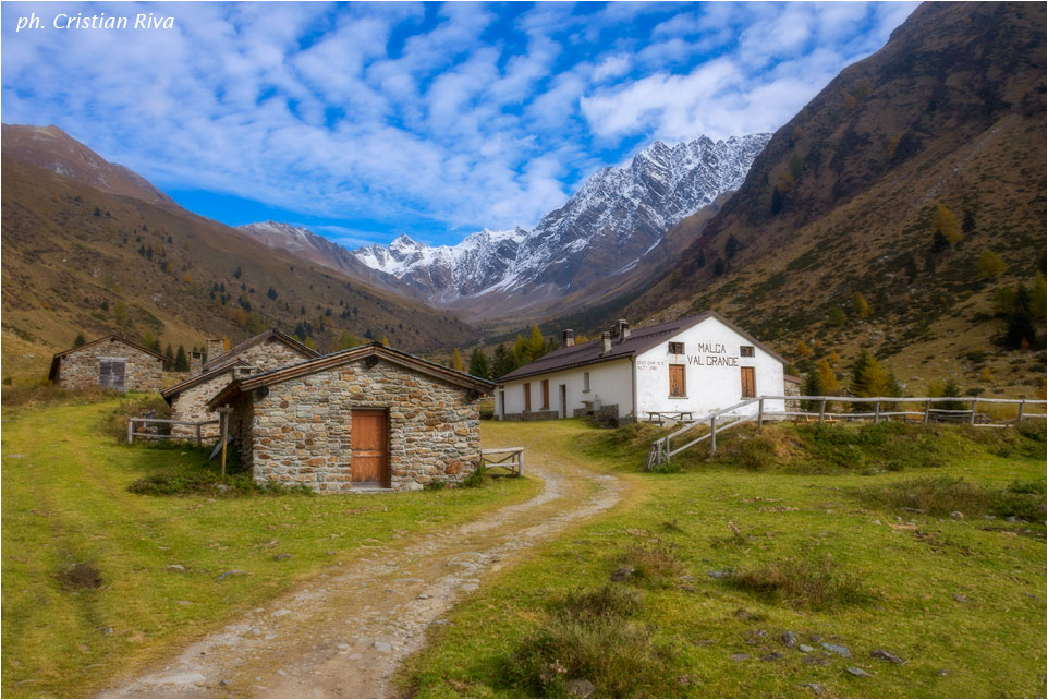 Val Grande di Vezza d'Oglio: malga Val Grande