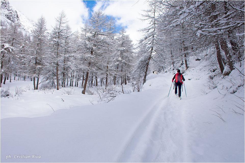 Ciaspolata in Val Canè: verso il profondo della vallata