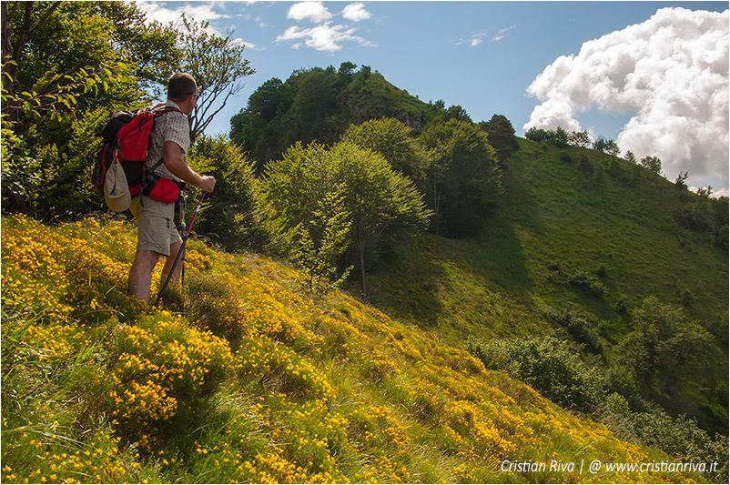 Pizzo di Cusio e Monte Disner: verso il monte Disner