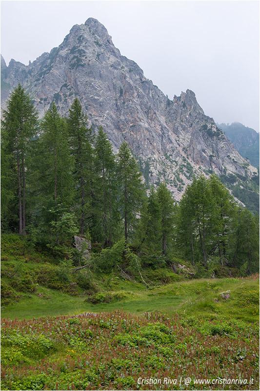 Sentiero estivo del Calvi: panorama