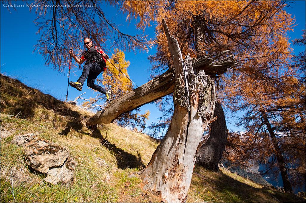 Monte Colle ed i larici autunnali