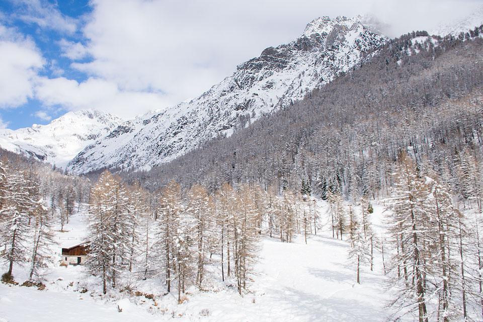 Ciaspolata in Val Canè