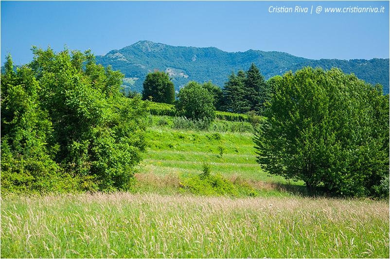 Bergamo, sentiero dei monasteri - In lontananza il Canto Alto