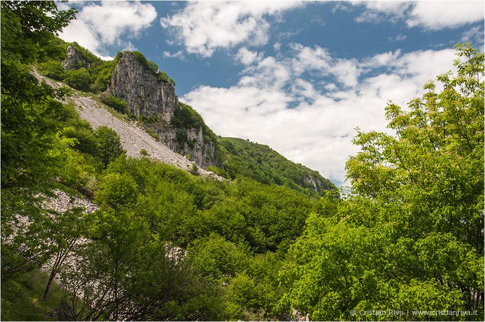 Anello tra i narcisi del monte Linzone: la Corna Marcia
