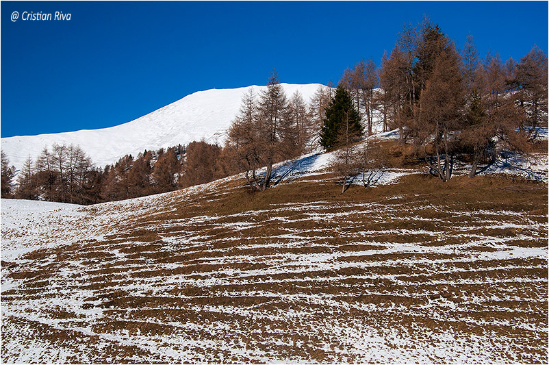 Ciaspolata Monte Frerone