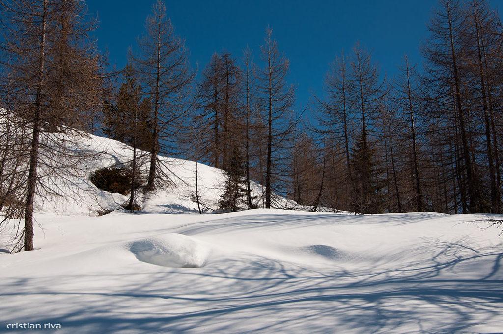Alpe Prabello, paradiso per le ciaspole