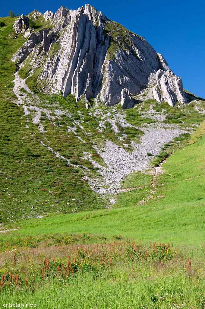 Monte Pegherolo: canne d'organo al Passo San Simone