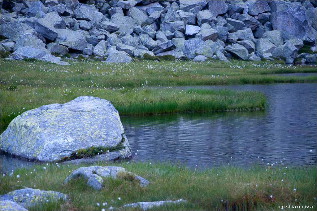 Monte Adamello via Terzulli: il pantano del Miller