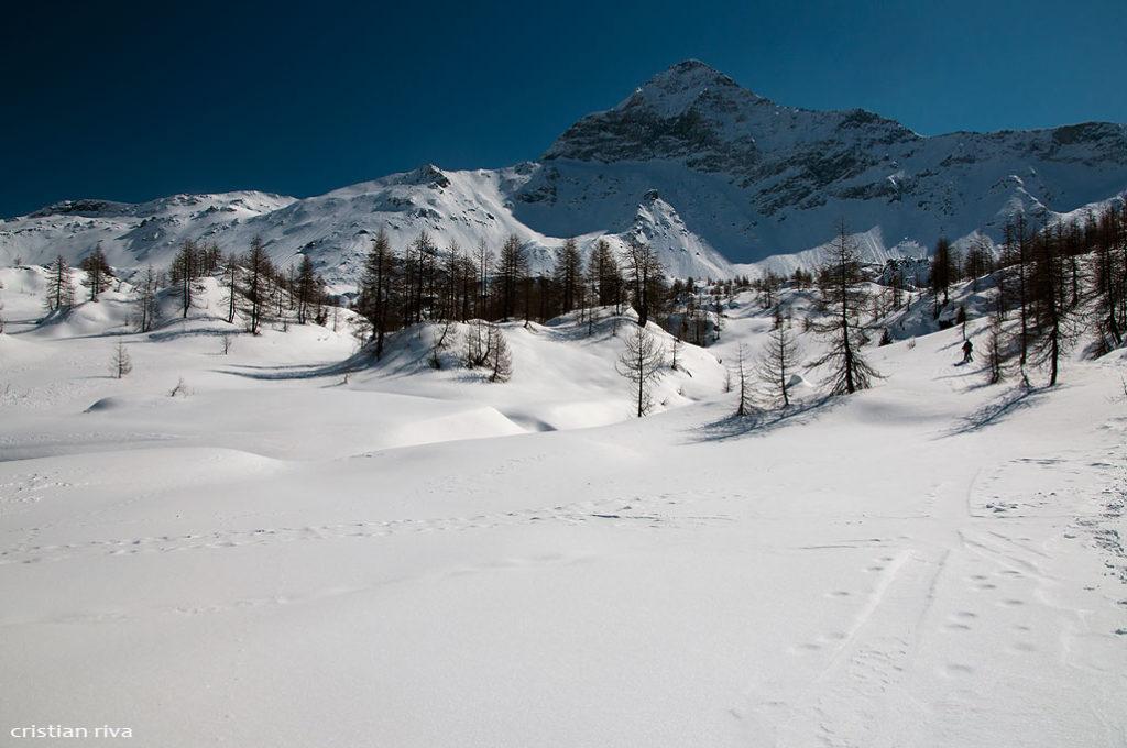 Alpe Prabello, paradiso per le ciaspole: il Pizzo Scalino