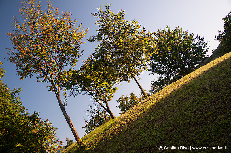 Valgandino Traversata tra i Pizzi: giardino