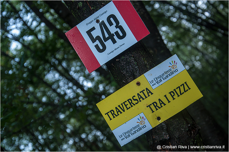 Valgandino Traversata tra i Pizzi: indicazioni