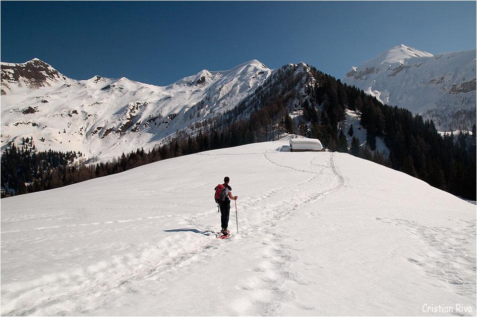 Ciaspolata in Val Terzera