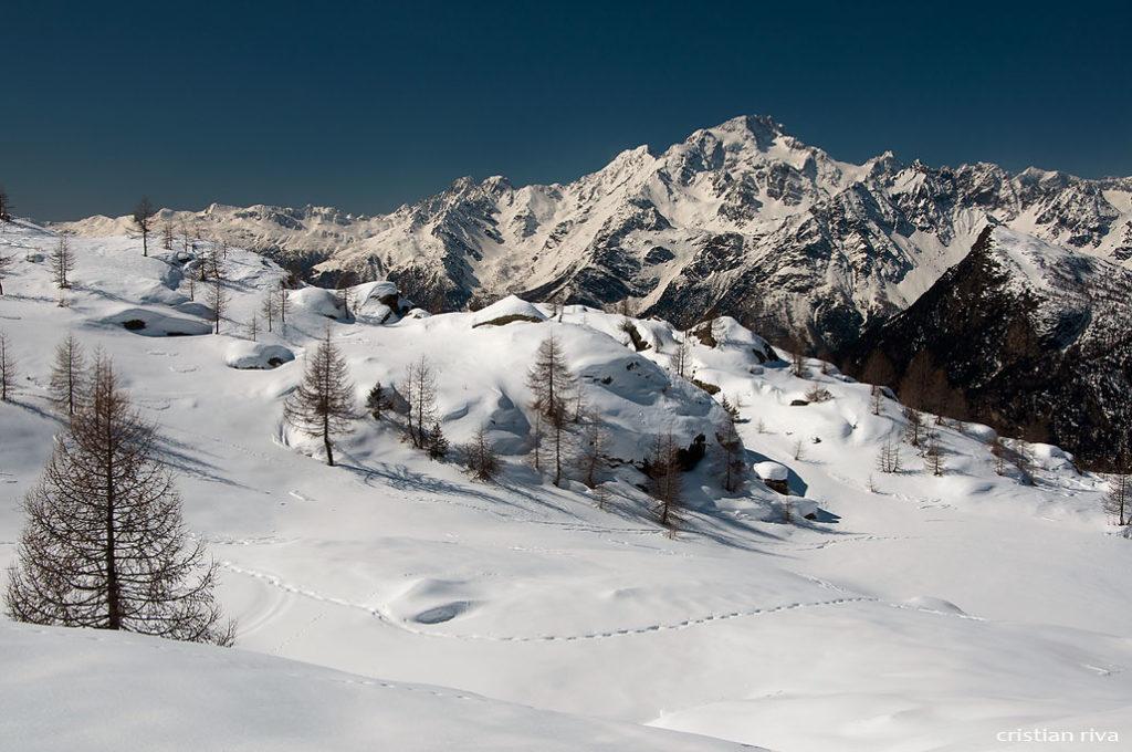 Alpe Prabello, paradiso per le ciaspole: monte Disgrazia