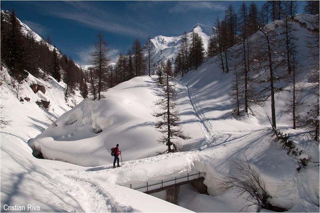 Ciaspolata ai Laghi Gemelli: ponticello sul Lago Casere