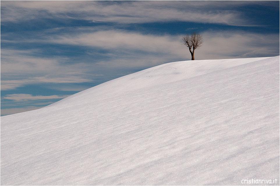 Colli di San Fermo