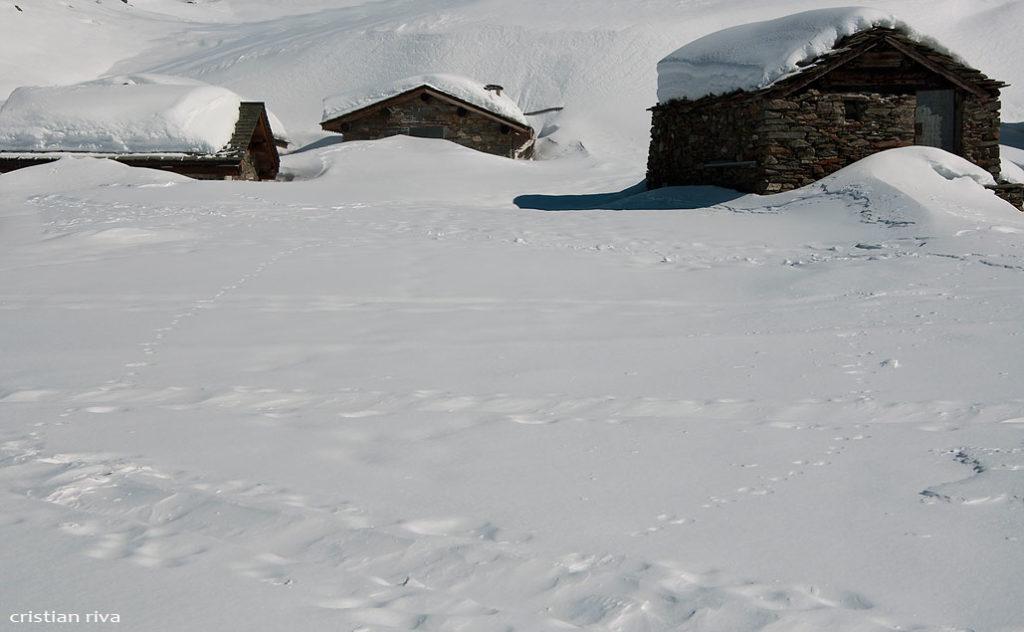Alpe Prabello, paradiso per le ciaspole: le baite dell'alpe Prabello
