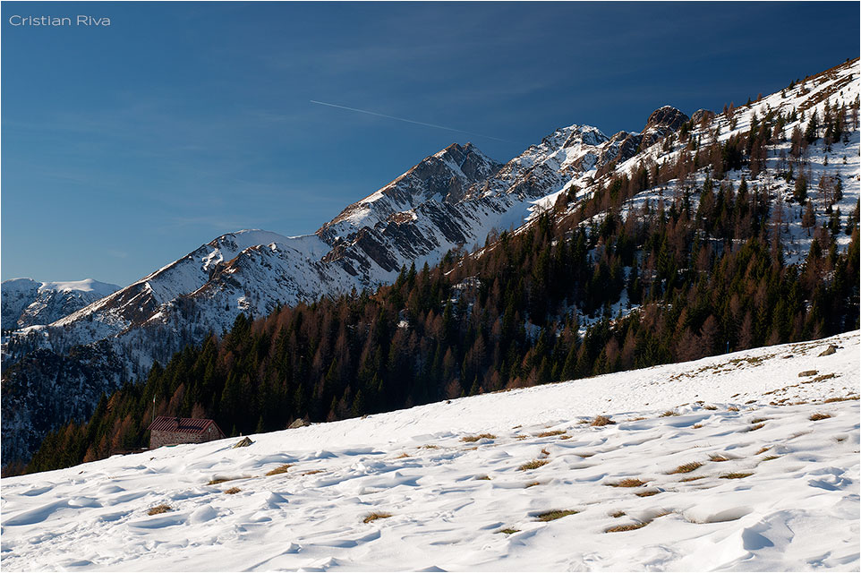 Ciaspolata su Monte Avaro e Triomen