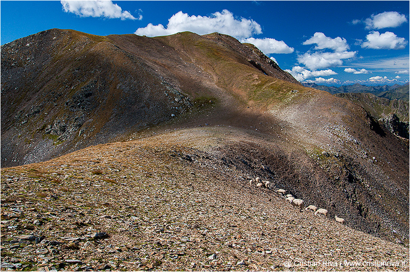 Monte Masoni: uno sguardo alle spalle
