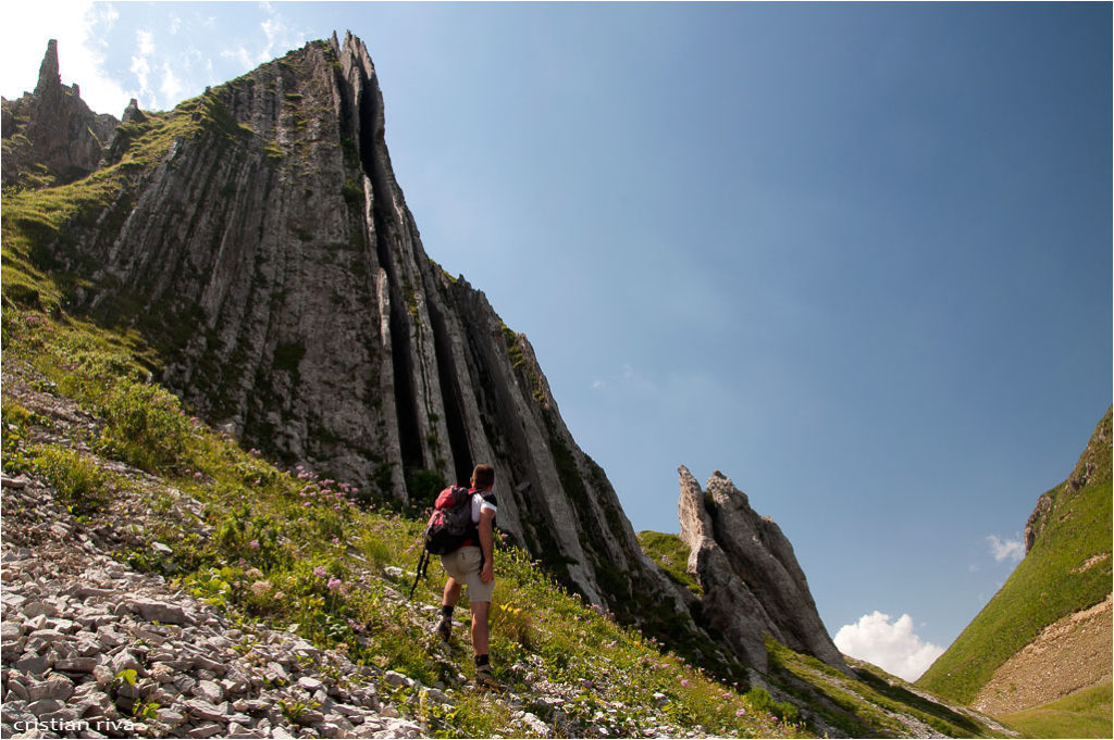 Monte Pegherolo: canne d'organo