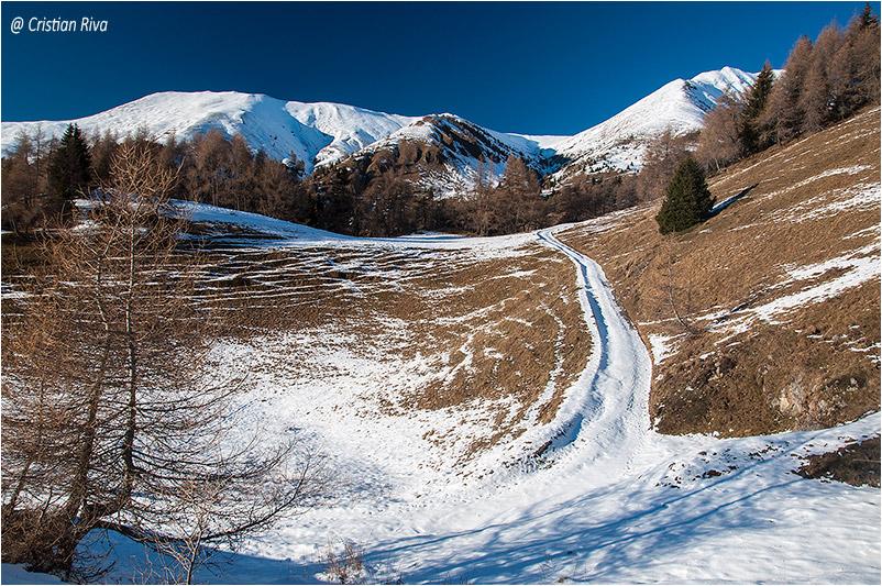 Ciaspolata Monte Frerone: verso Bazena