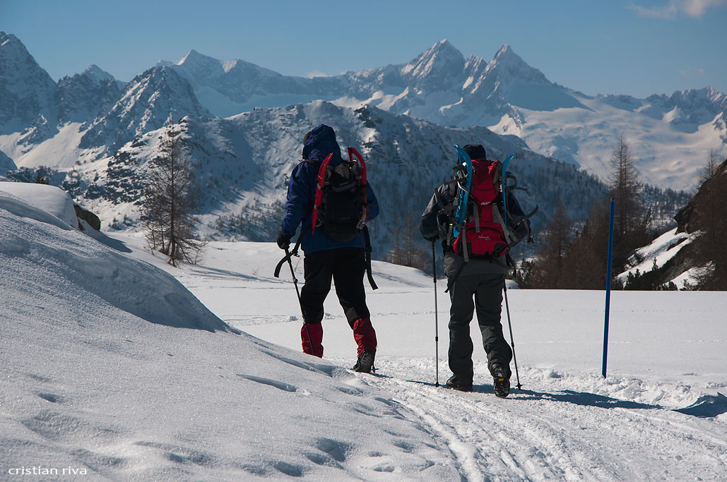 Ciaspolata all'alpe Prabello