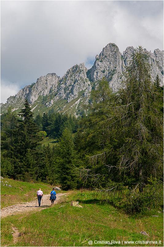 Cimon della Bagozza: escursionisti
